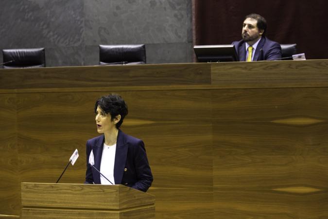 Elma Saiz, durante su comparecencia en el pleno del pasado 7 de mayo.
