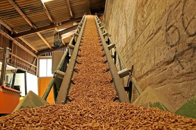 Baluarte acogerá en noviembre la primera Feria de Biomasa Forestal de Navarra