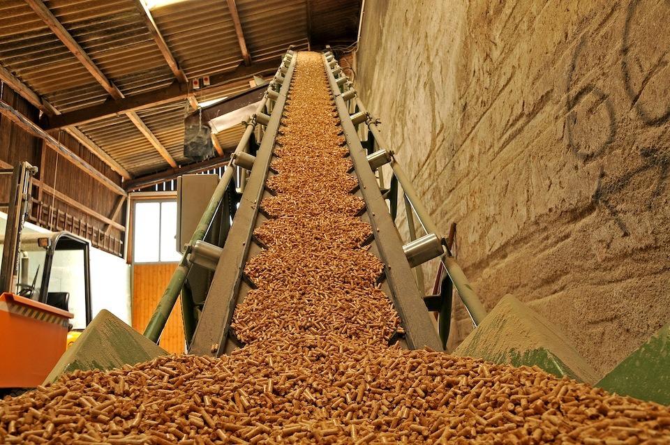 I Feria de Biomasa Forestal de Navarra