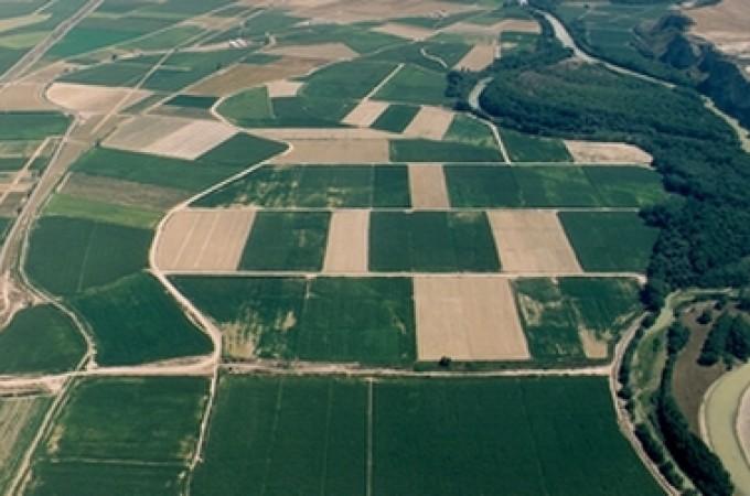 14.354 agricultores y ganaderos navarros reciben cerca de 45 millones de euros de la PAC