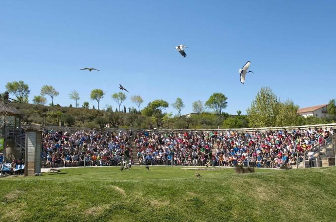 Sendaviva alcanzó los 187.035 visitantes en 2014