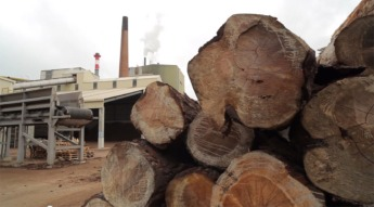 smurfit-kappa-planta-biomasa