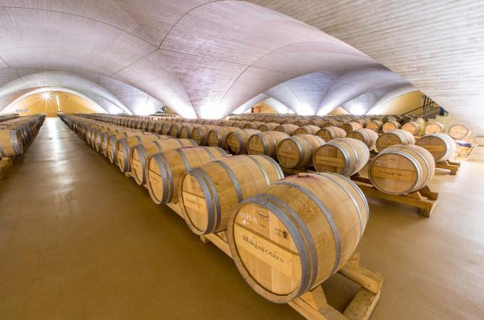 El vino navarro se abre a nuevos mercados