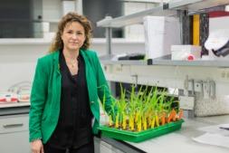 Nora Alonso, CEO de Iden Biotechnology en sus instalaciones de AIN.