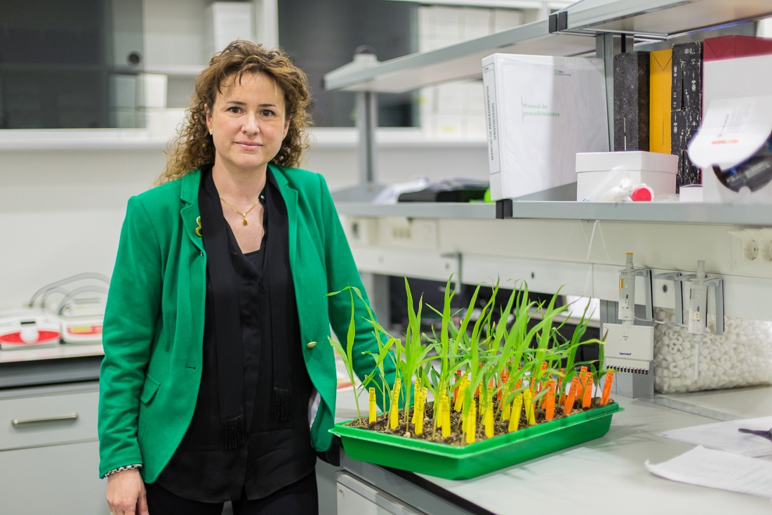 Nora Alonso, CEO de Iden Biotechnology, será una de las ponentes de Alimenta Navarra Meeting Point.