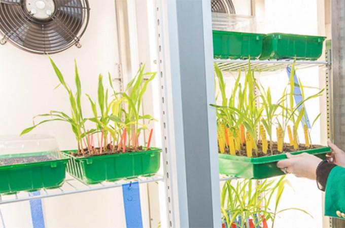CEIN organiza una jornada sobre las tendencias del sector agroalimentario