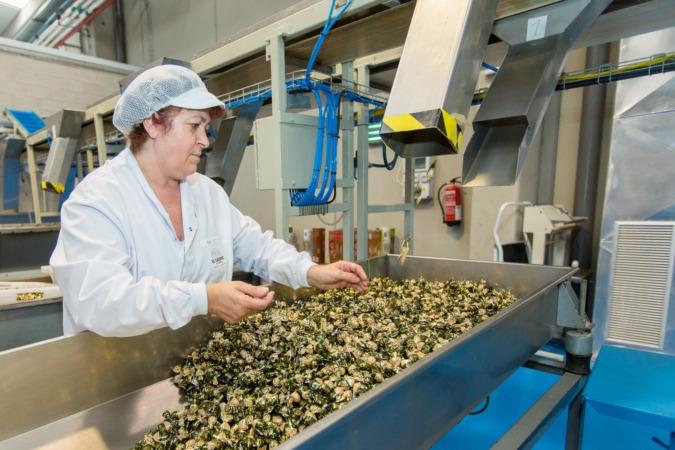 Línea de producción de Caramelos El Caserío de Tafalla, premio Alimenta 2017 a la Innovación.