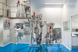 La ayuda se destinará a 65 proyectos tecnológicos y de investigación. (Imagen: 3P Bio. Cedida)