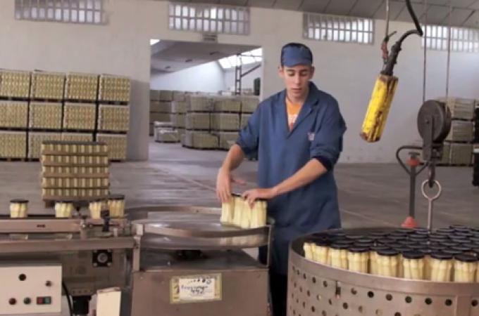 Ayudas para inversiones de las industrias agroalimentarias