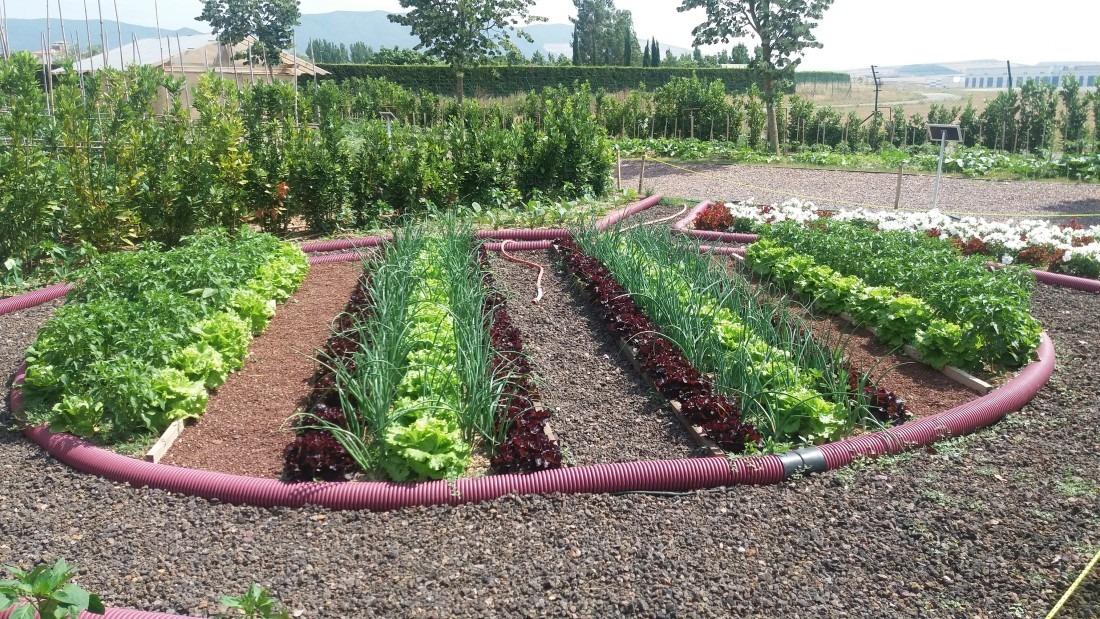 Jardin Comestible Ikatza