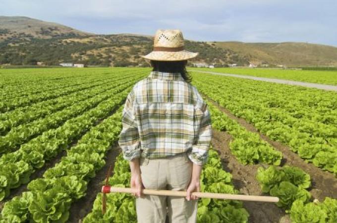 Navarra incentiva el relevo generacional en el sector primario