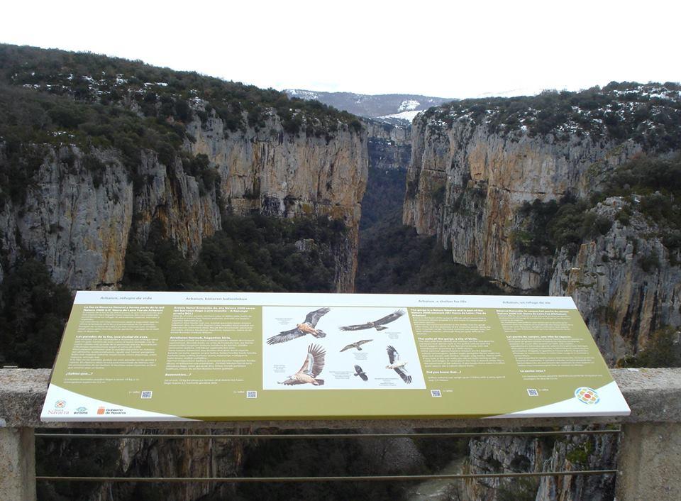 Birding Navarra
