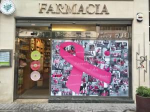 Navarra rosa por Saray 3