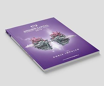 Anuario Capital de economía y empresa navarra 2016