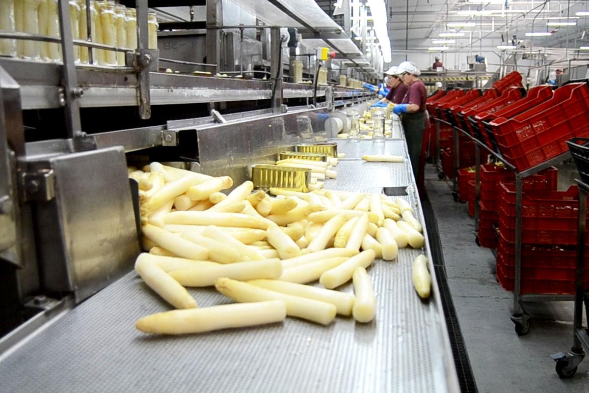 Las más optimistas son las empresas del sector agroalimentario.