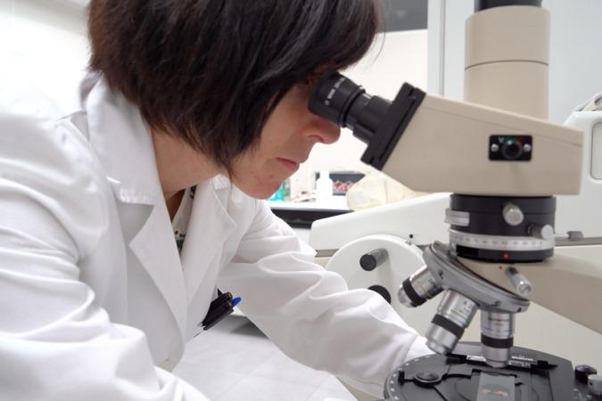 InnoUp dará el paso ahora a los ensayos clínicos.