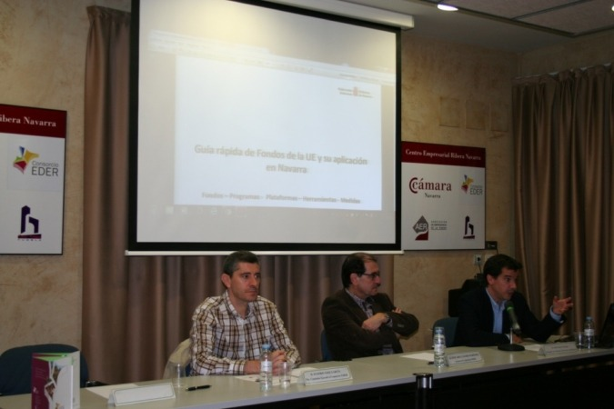 Mikel Irujo, Tudela, Fundación Dédalo