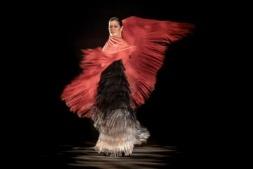 Sara Baras abrirá los espectáculos de Baluarte con 'Sombras'.