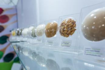 Semillas indias, de la Feria Alimentaria en Delhi a la que acudió una delegación de empresas navarras.