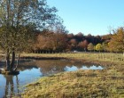 Personas en riesgo de exclusión de Navarra participan en un novedoso proyecto medioambiental