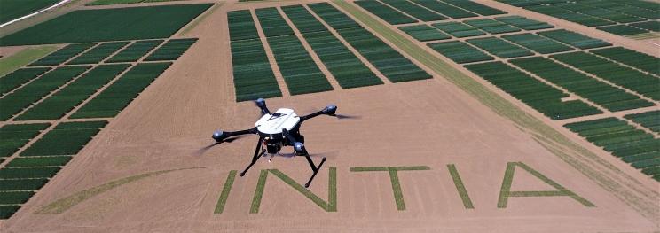 Dron en un campo de cultivo