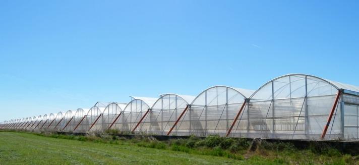 La empresa adquirió a Elaborados Naturales su fábrica de Lodosa