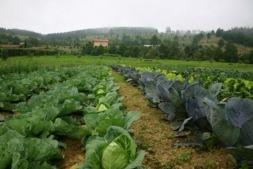 La Feria Navarra Ecológica es un escaparate para la agroalimentación natural.