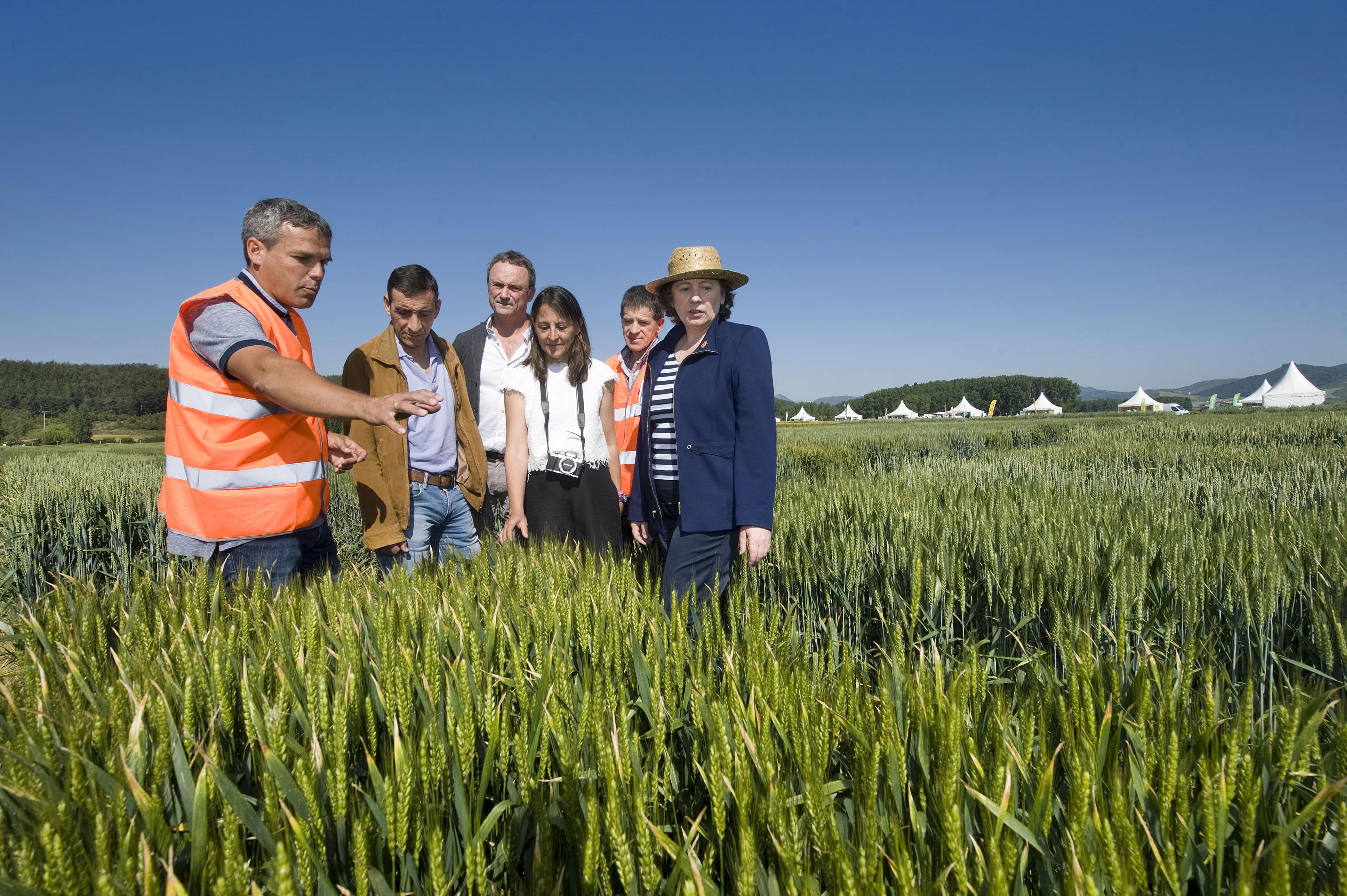 Imagen de la consejera Isabel Elizalde en un reciente encuentro sobre innovación agrícola.