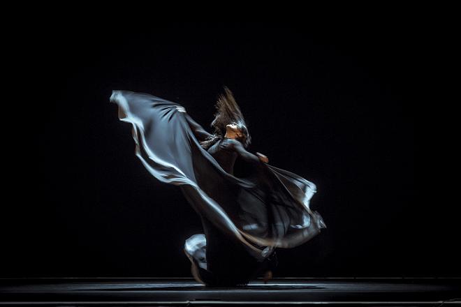 Desde el día 3 de agosto Pamplona comienza las actividades previas de Flamenco On FIre.