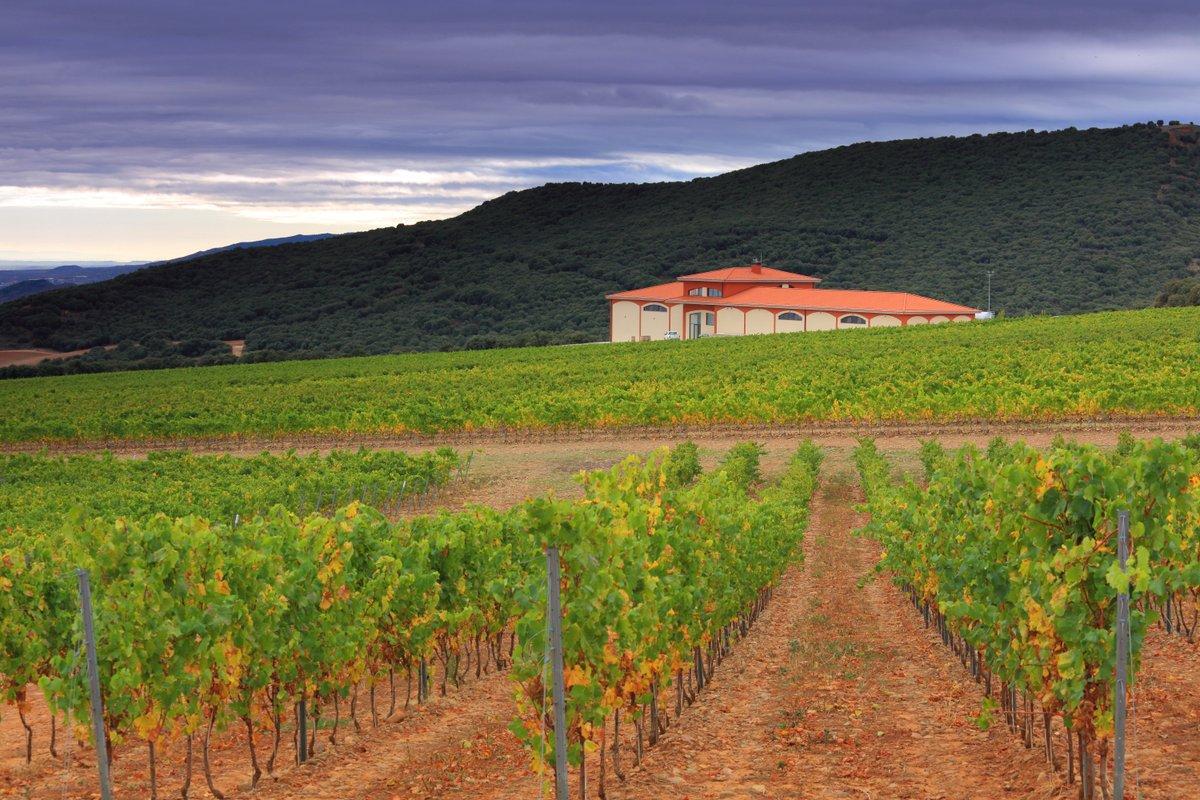 Panorámica de la nueva bodega en Bergasa (La Rioja) del Grupo Barón de Ley.