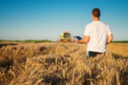 La generalización de las nuevas tecnologías también alcanza al sector agroalimentario.