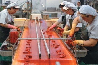 Mujer-Trabajo-Agricultura-Conserva