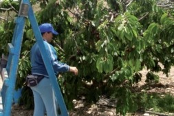 UAGN reclama más apoyo del Gobierno de Navarra los agricultores y ganaderos.