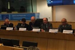 Manu Ayerdi, en un momento de su intervención, en Bruselas.