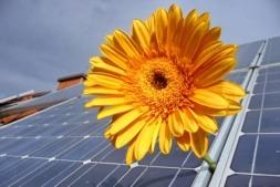 """Desde INGETEAM recuerdan que """"la energía fotovoltaica es, a día de hoy, competitiva en precio sin ningún tipo de ayudas ni subsidios""""."""