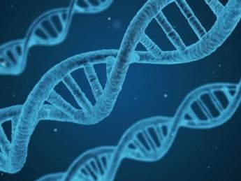 DNA-Investigacion-Biotecnologia
