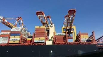 exportación (1)