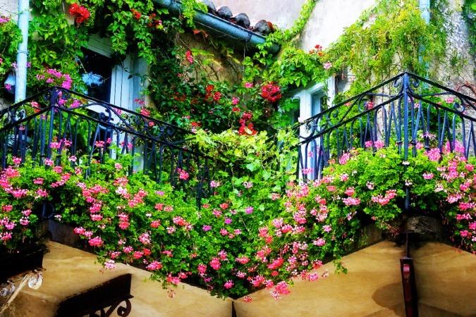 El 'Primer concurso de decoración floral de bacones de Pamplona' busca transformar los balcones en floridos jardines.