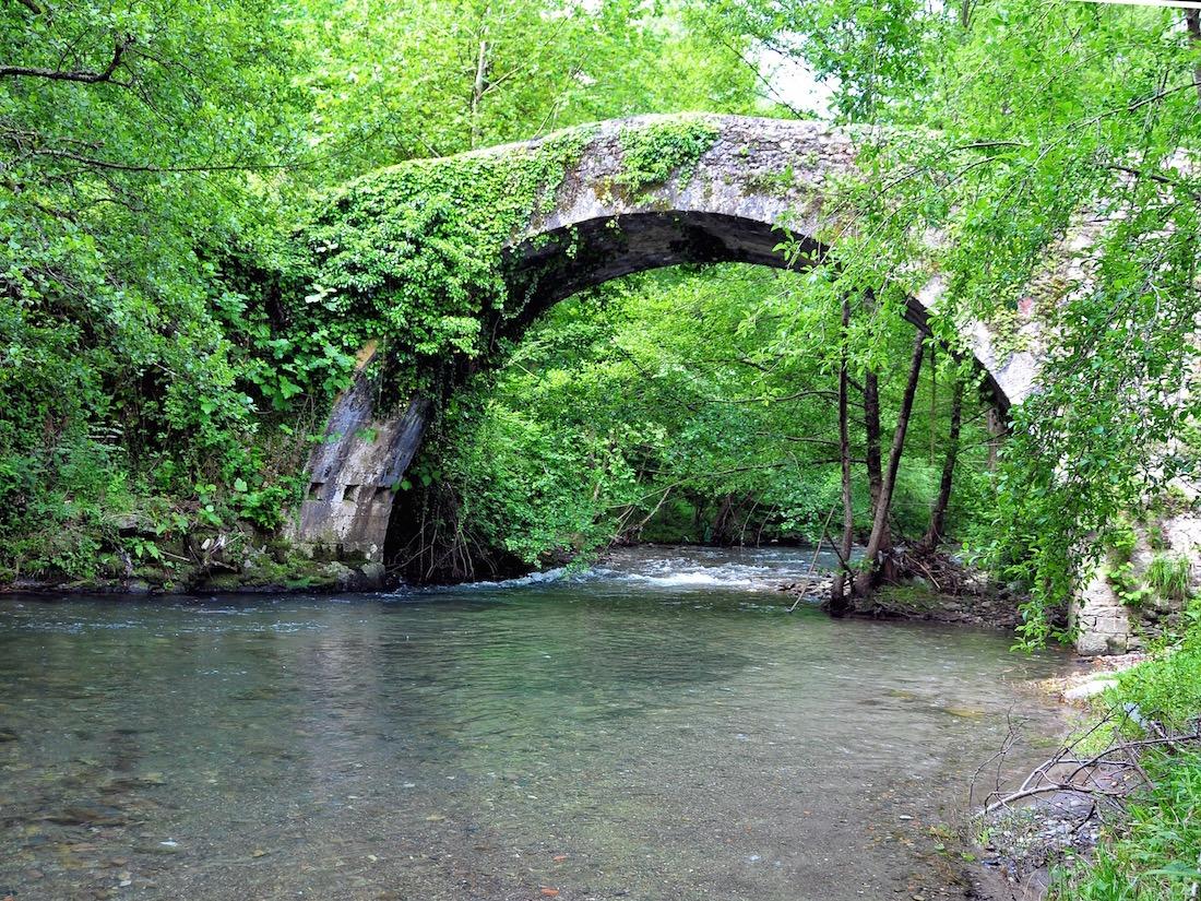 Naturaleza-Elgorriaga-cerca