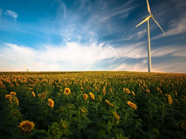 Navarra quiere fomentar la sostenibilidad y la competitividad de su sector primario.