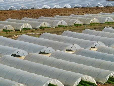 greenhouse-64394__340