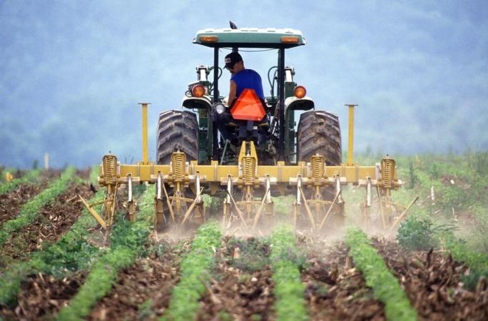 El sector agrícola es uno de los que mejor se ha comportado en mayo en lo que al empleo se refiere.