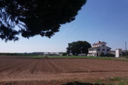 La finca experimental de INTIA ubicada en Sartaguda está inscrita en el Consejo de la Producción Agraria Ecológica de Navarra (CPAEN).