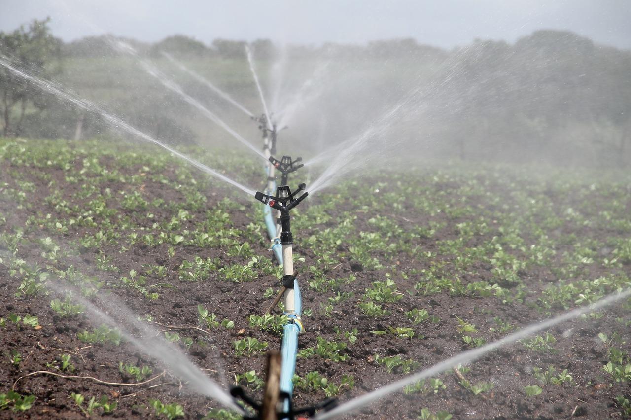 El programa busca la eficiencia en el uso y manejo integrado de agua y fertilización en zonas vulnerables.