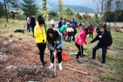 Más de medio centenar de personas y 15 empresas se dieron cita en el monte este sábado en una iniciativa de RSC que apuesta por el medioambiente.