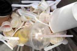 Envases alimentarios de plástico