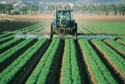 Nuevas ayudas para evitar la despoblación de las zonas rurales e incrementar la competitividad de su tejido agroalimentario.