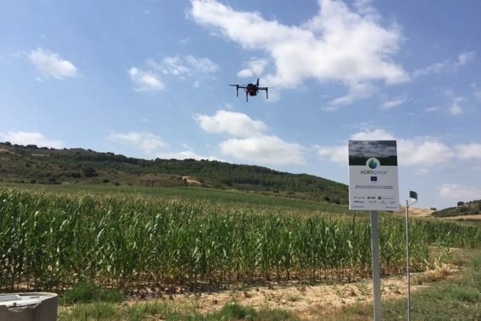 Un dron sobrevuela una parcela piloto del programa LIFE AGROgestor de la Cooperativa Orbalaiz.