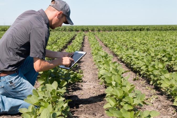 En la alimentación del futuro, van a convivir lo clásico con lo más nuevo y tecnológico, tanto en la producción como en el consumo.