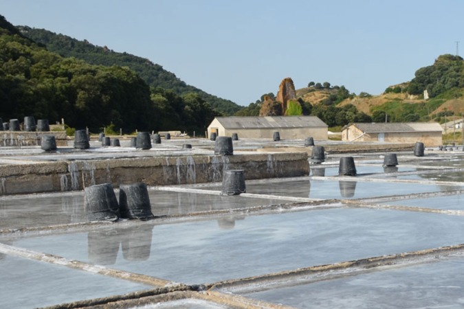 Las salinas donde se produce la sal de la empresa Hermanos Gironés, en Salinas de Oro.
